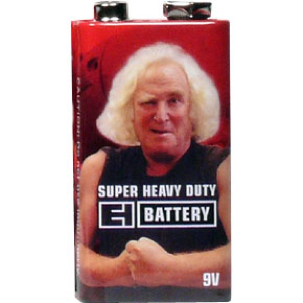 ELECTRO-HARMONIX9ボルト電池の画像