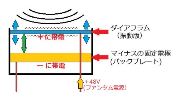 コンデンサーマイクの構造の解説図